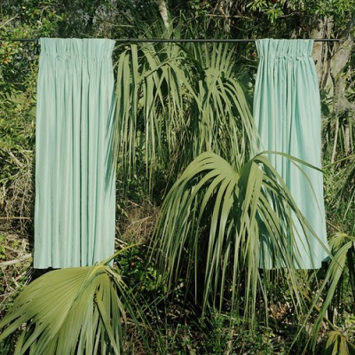 palm curtains